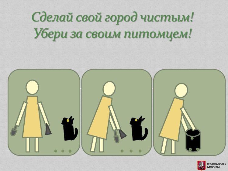 Как сделать за своей чистотой