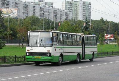В столице появятся три автобусных маршрута, которые предложили сами жители