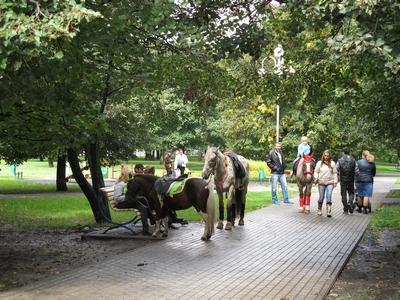 Бирюлево Западное. Пошли пешком — узнаем свой район!