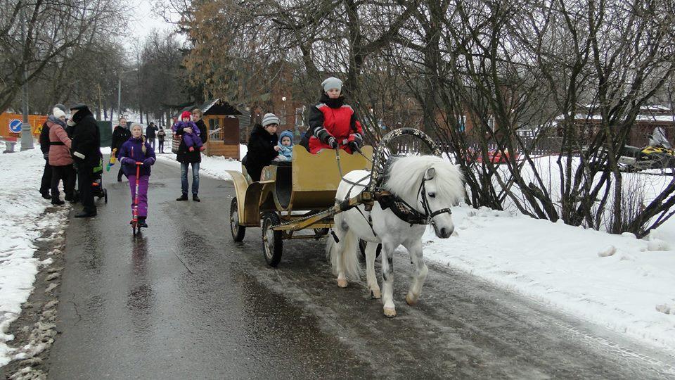 В Коломенском на новые маршруты выйдут экипажи с пони