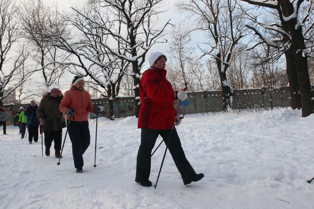 В парке «Садовники» научат скандинавской ходьбе