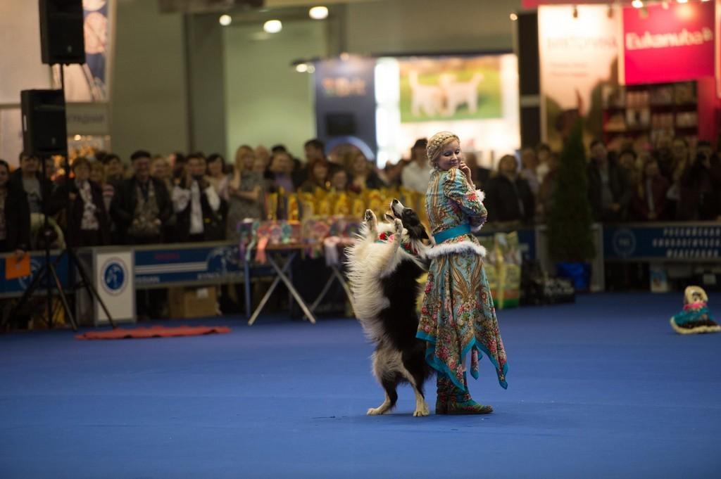 «Собачий вальс»: Москва принимает чемпионат мира по танцам с домашними любимцами