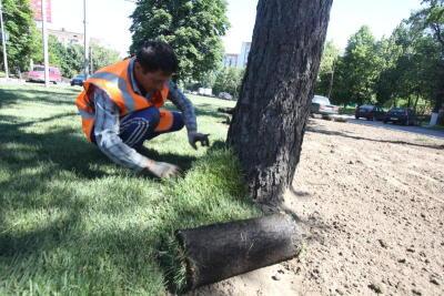 В районе Братеево восстановили газон