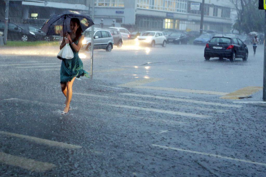 МЧС предупредило москвичей о грозе и порывистом ветре 11 июля