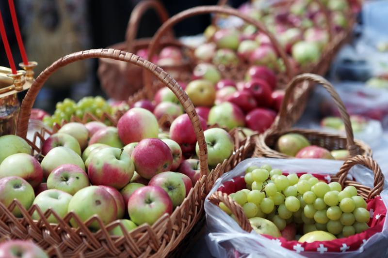 Гости парка «Садовники» примут участие в «яблочной» фотосессии