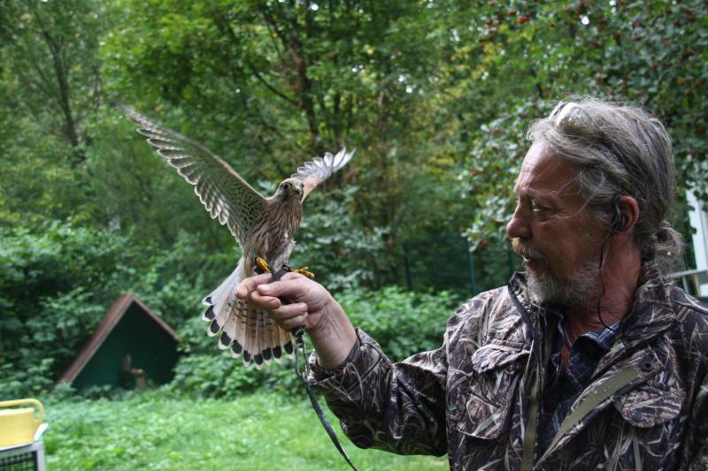 Кормушки для птиц установили в Царицынском парке