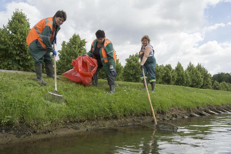 На территории Покровского парка очистили водоем