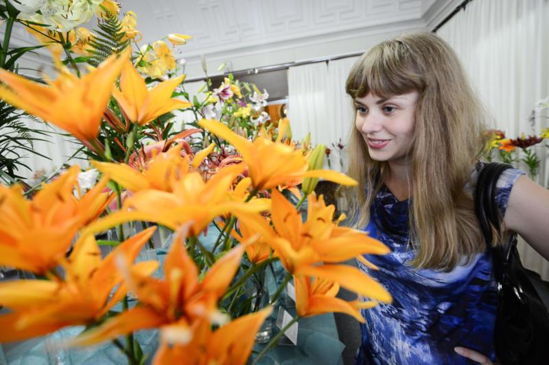 Посмотреть на цветок Котовника