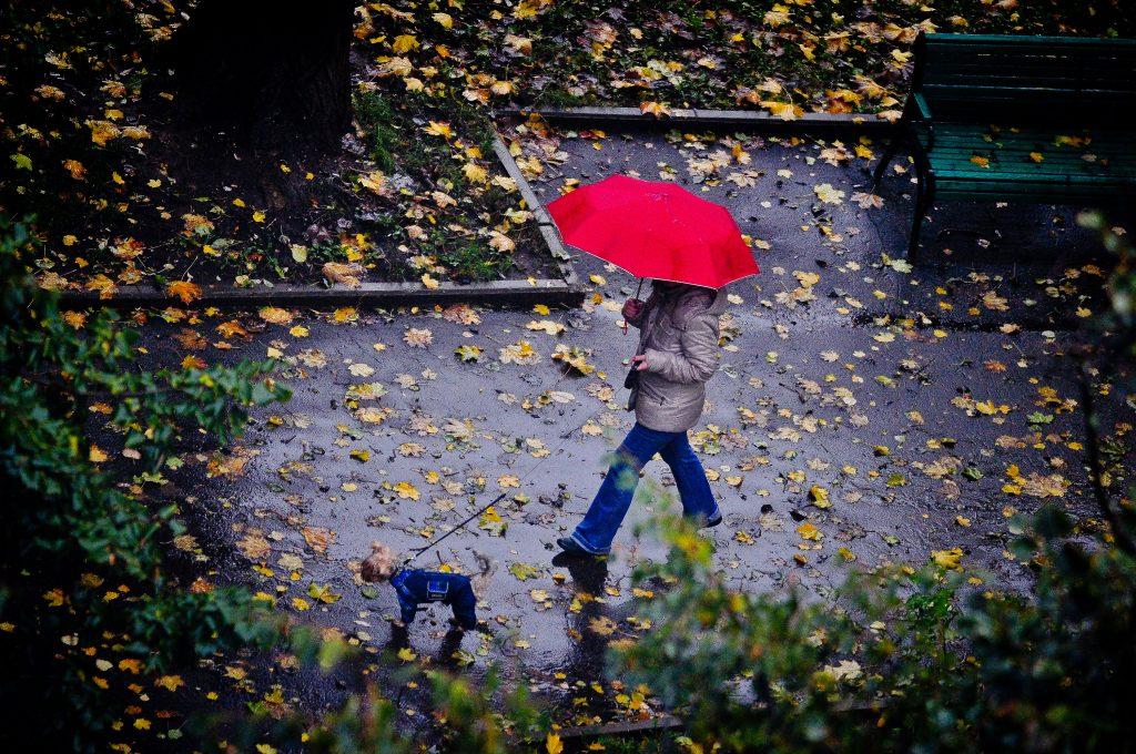 Оранжевый уровень опасности грозит Москве из-за погоды