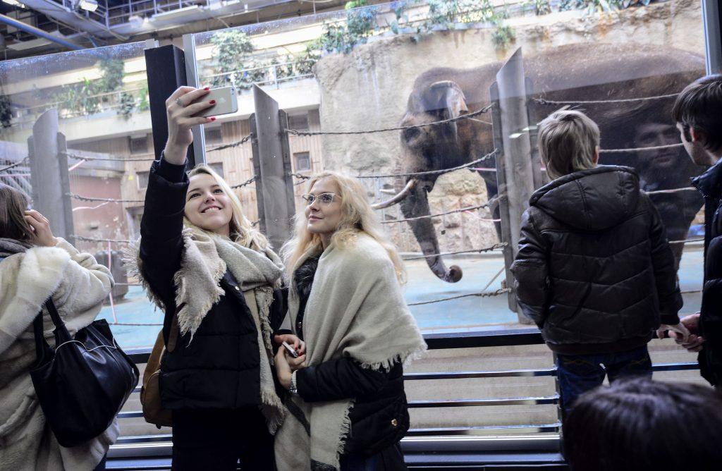 Генеральным директором Московского зоопарка стала Светлана Акулова