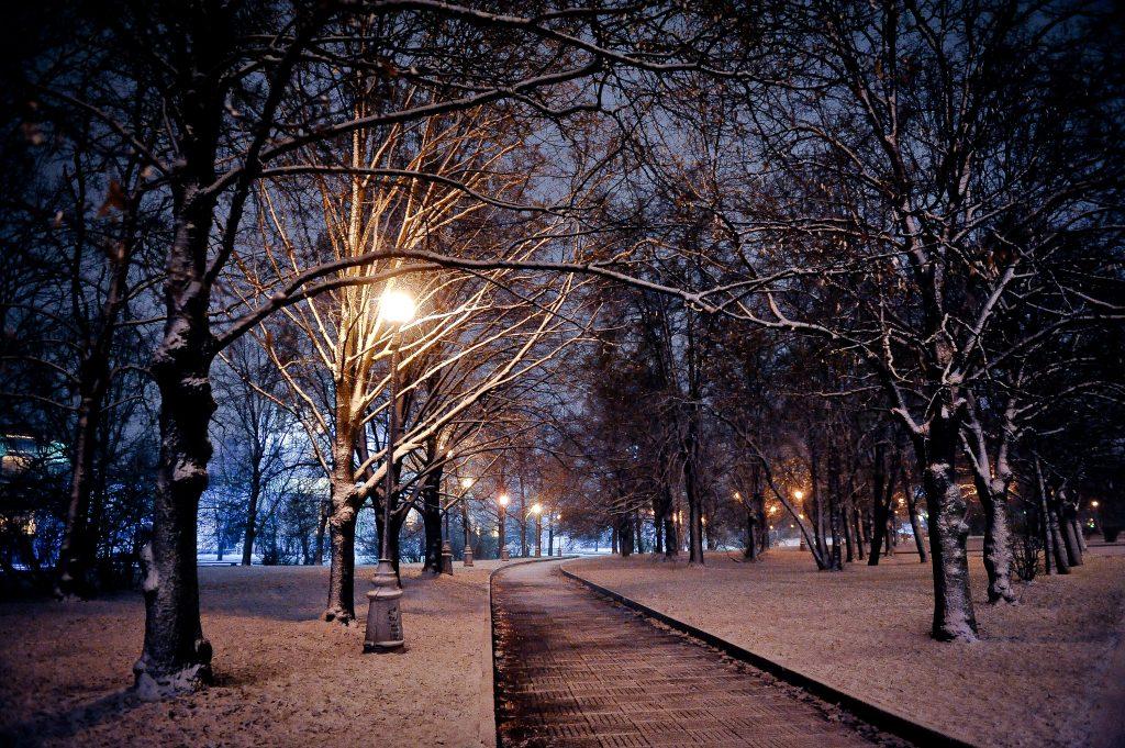 Жители Москвы увидели первый снег