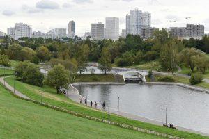 """В Общественной палате России обсудили экологию и содержание парков Москвы. Фото: """"Вечерняя Москва"""""""