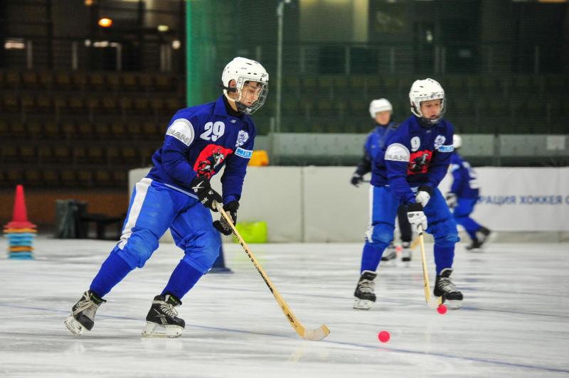 Будущее — за хоккеем с мячом