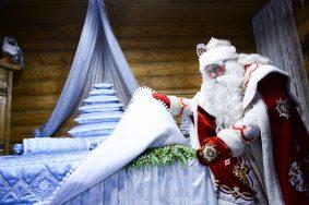 Дата: 27.11.2014, Время: 11:49  Усадьба Деда Мороза в Кузьминках