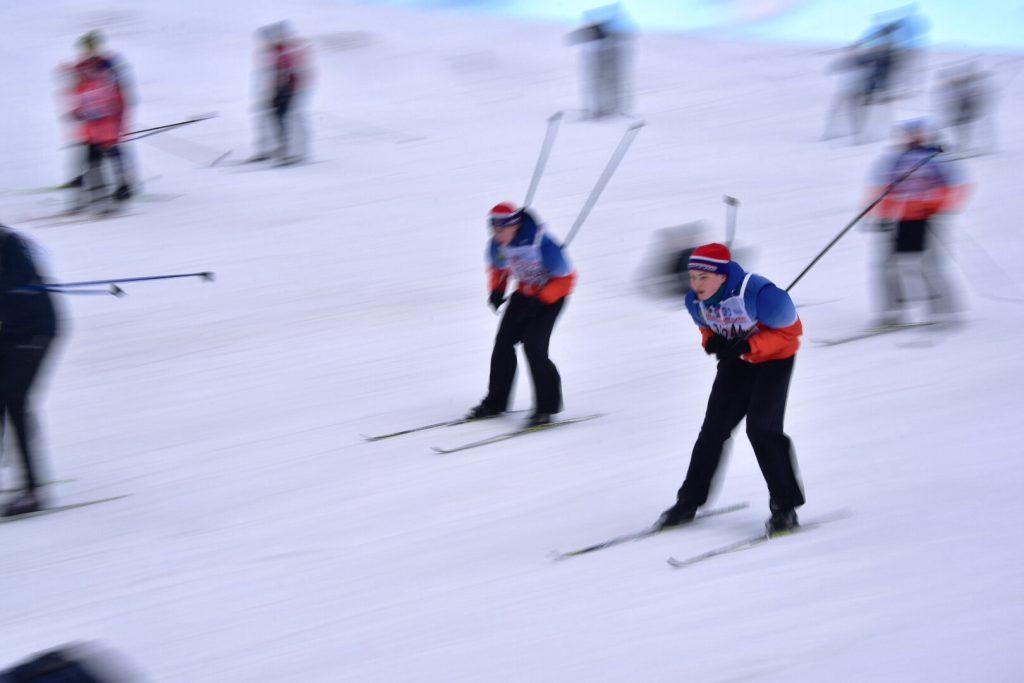 Как лыжная гонка попала в дендропарк