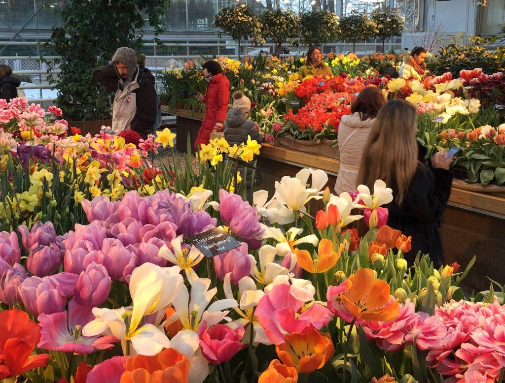 Выставку «Репетиция весны» в Москве каждый день посещают по пять тысяч человек