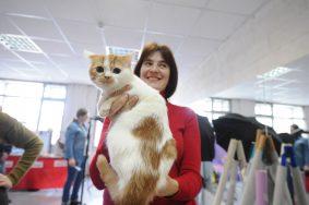 Ученые: кошки не являются эгоистами