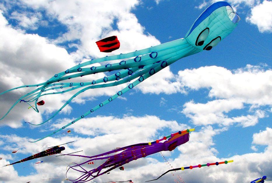 Летающие киты и осьминоги: в «Царицыне» запустят в небо воздушных змеев