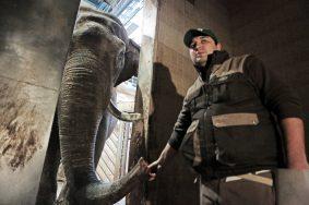 Московский зоопарк откроет образовательный центр