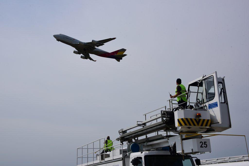 Самолет протаранил стаю птиц и вернулся во «Внуково»