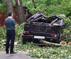 Жители Москвы стали получать выплаты за майский ураган