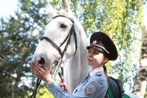 В прошлом году ведомство закупило два солярия для скакунов. Фото: Наталия Нечаева, «Вечерняя Москва»