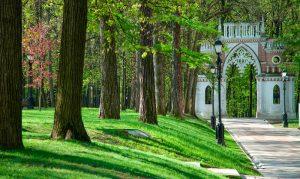 Царицынский парк отметит день рождения в торжественной обстановке. Фото: пресс-служба музея-заповедника «Царицыно»