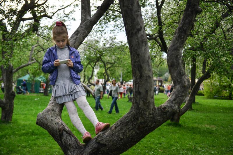 Московские зоны отдыха обработали от клещей