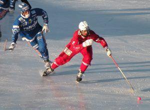 Турнир по хоккею с мячом «Золотая клюшка» состоялся в прошлую пятницу в парке у пруда «Бекет». Фото: wikipedia.org