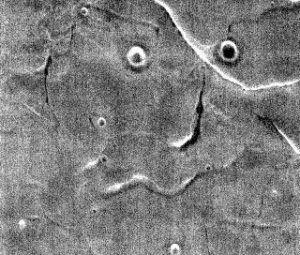 NASA показали «человеческое лицо» Марса