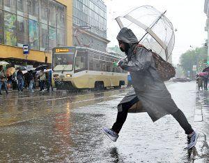 Действенной данная мера станет в плохую погоду. Фото: Светлана Колоскова