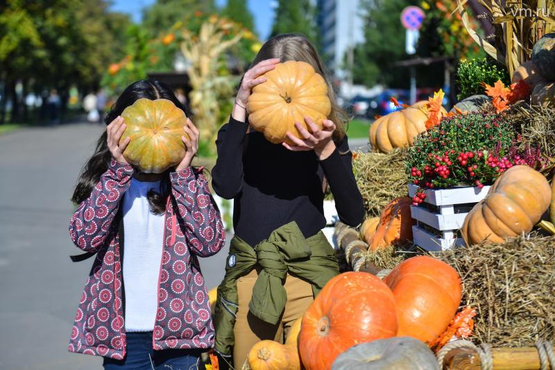Съедобные украшения фестиваля «Золотая осень» в Москве отдали на корм животным
