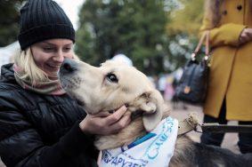 Общение с собаками продлевает жизнь человека