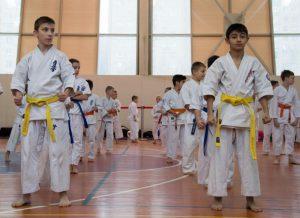 Более пяти спортивных школ в ЮАО оснастят в следующем году беспроводной интернет-сетью. Фото: архив, «Вечерняя Москва»