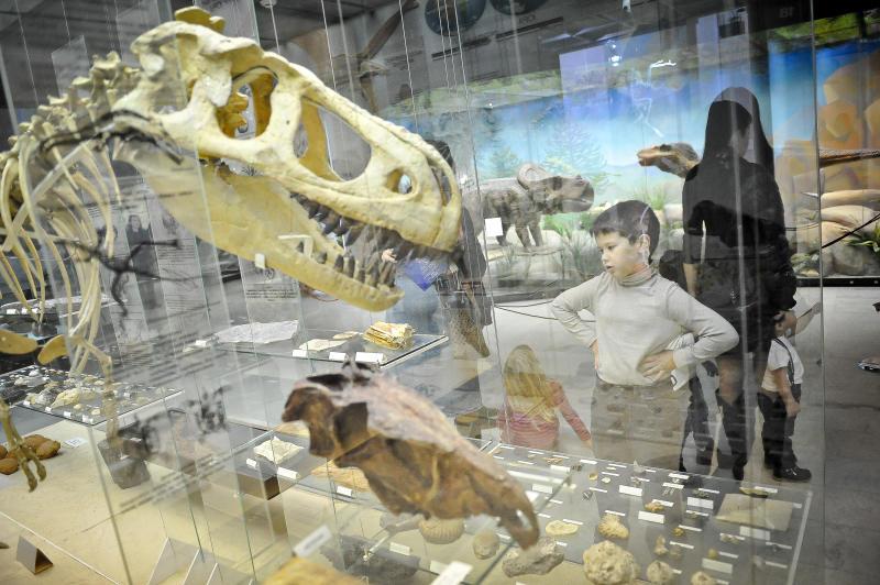 Уникальный экспонат выставят в Дарвиновском музее