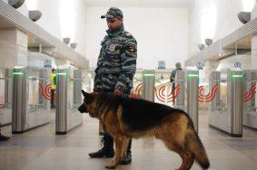 Круглосуточно будет работать оперативный штаб. Фото: Пелагия Замятина