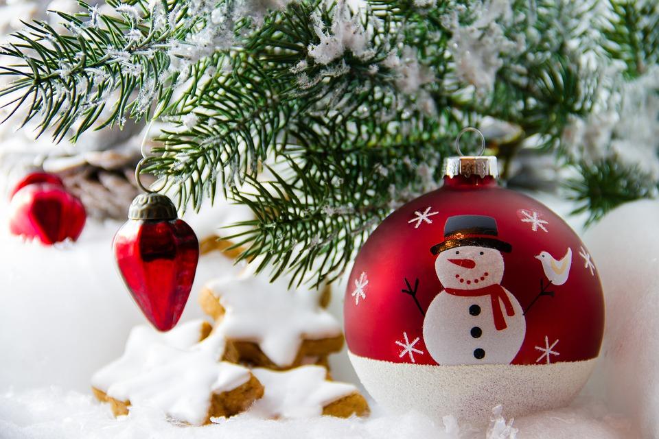 Какие иголки у праздничной елки: выбираем зеленую красавицу