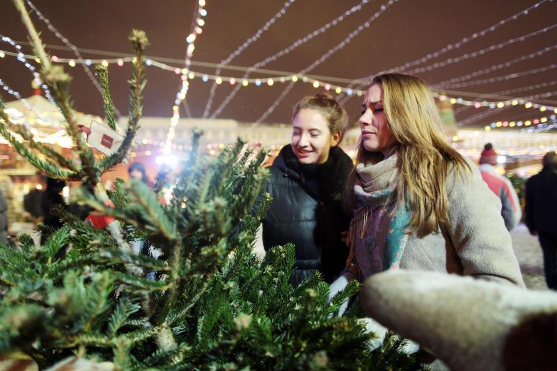 Более 35 елочных базаров откроют на юге Москвы