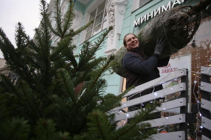 Москвичи смогут сдать елки в 12 пунктов утилизации
