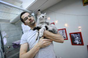Помочь бездомным животным удастся москвичам в рамках акции «Отзовись» Фото: архив, «Вечерняя Москва»