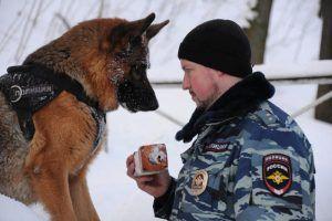 Перед началом массовых мероприятий места их проведения проверят кинологи со служебными собаками. Фото: Светлана Колоскова, «Вечерняя Москва»