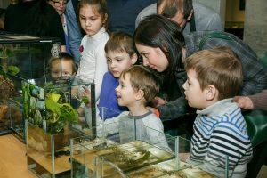 17 марта в Дарвиновском музее состоится весенний праздник «Всемирный день воды». Фото: пресс-служба Дарвиновского музея
