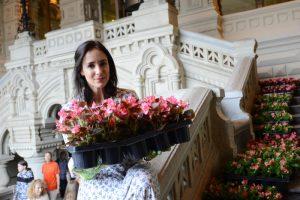 Цветниками «Царицына» займется выбранный по итогам конкурса подрядчик. Фото: архив, «Вечерняя Москва»