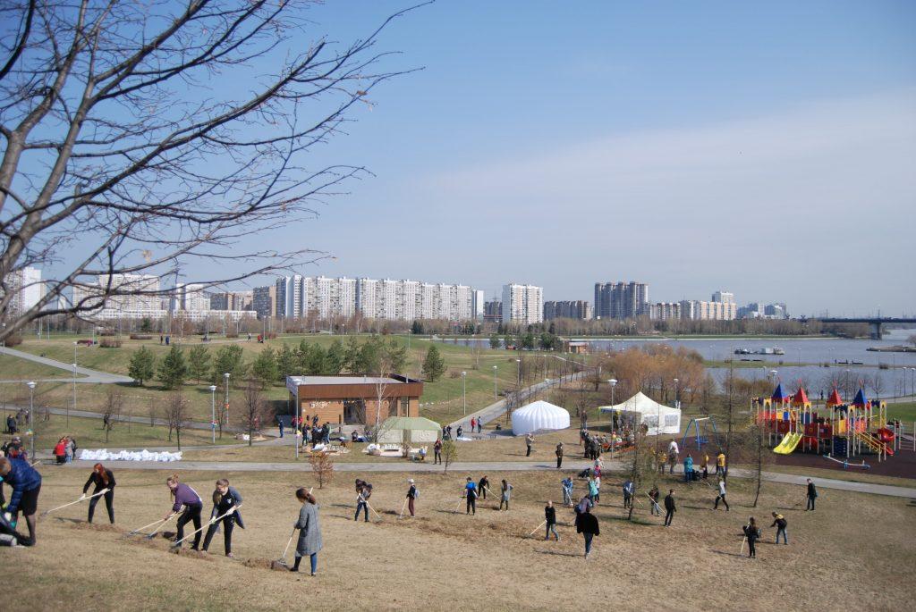Участники субботника в Братеевском парке высадили 150 деревьев