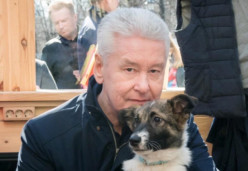 Сергей Собянин выбрал себе собаку из приюта