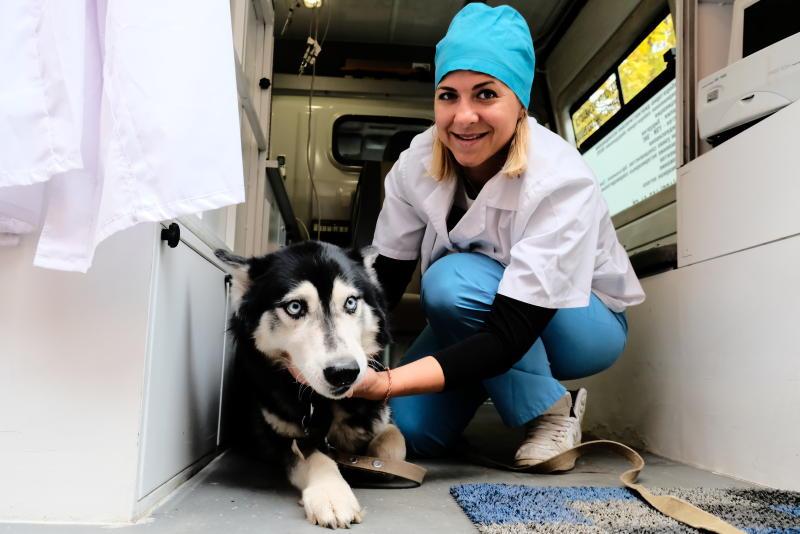 Пункты для вакцинации животных откроются в Братееве