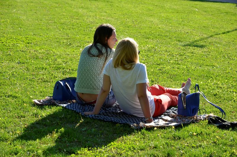 Большой культурный пикник пройдет в Чертанове Северном. Фото: Анна Быкова, «Южные горизонты»