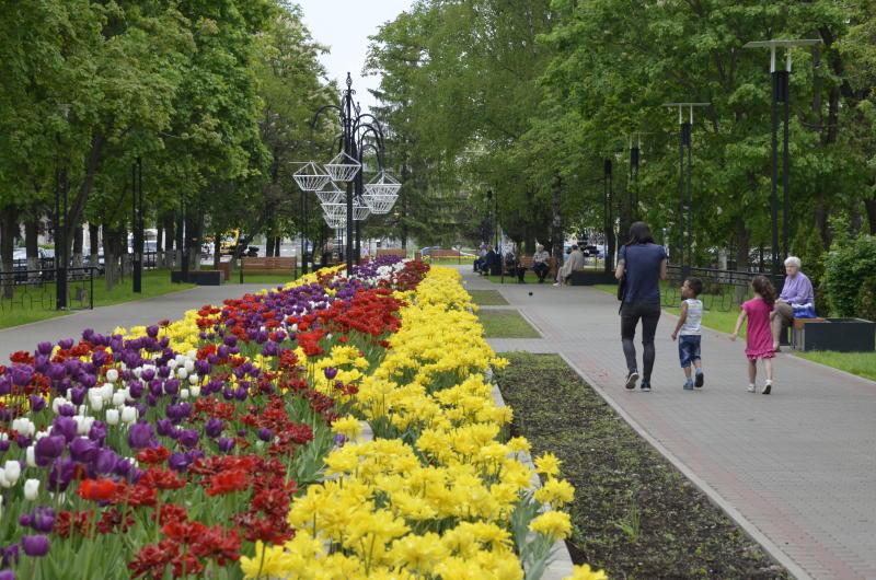 Более 500 гостей соберет фестиваль «Спасем Покровский парк от вандализма» в ЮАО