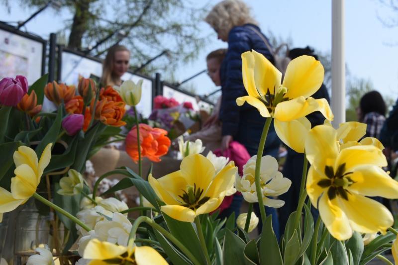 Более ста тысяч цветов и кустарников высадят в Зябликове летом