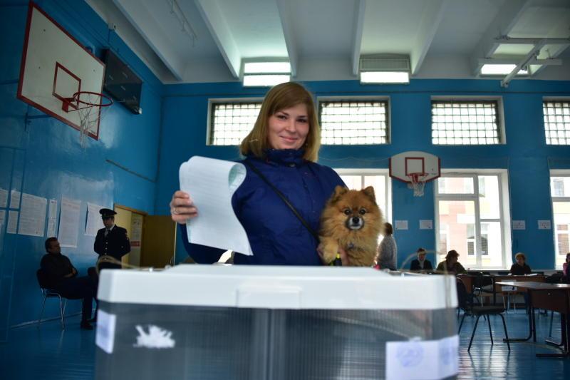 Регионы включились в работу по образованию «дачных» участков для голосования